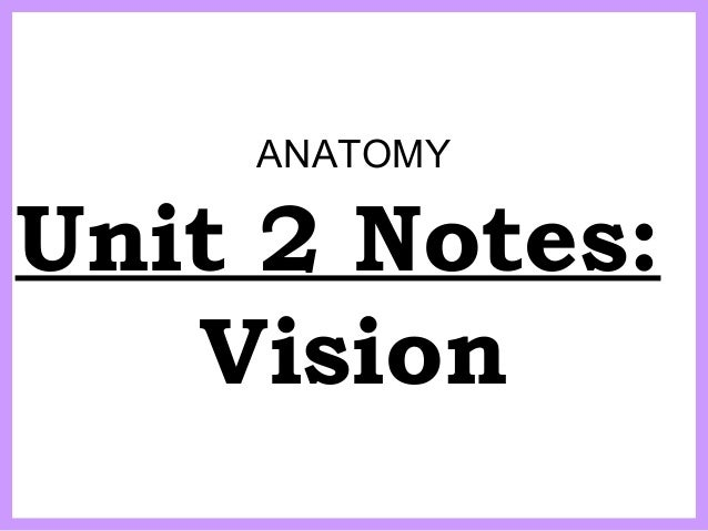 ANATOMY Unit 2 Notes: Vision