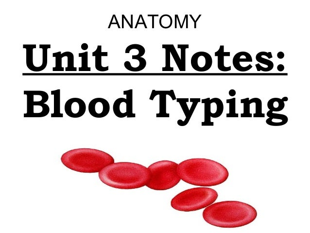 ANATOMY  Unit 3 Notes: Blood Typing