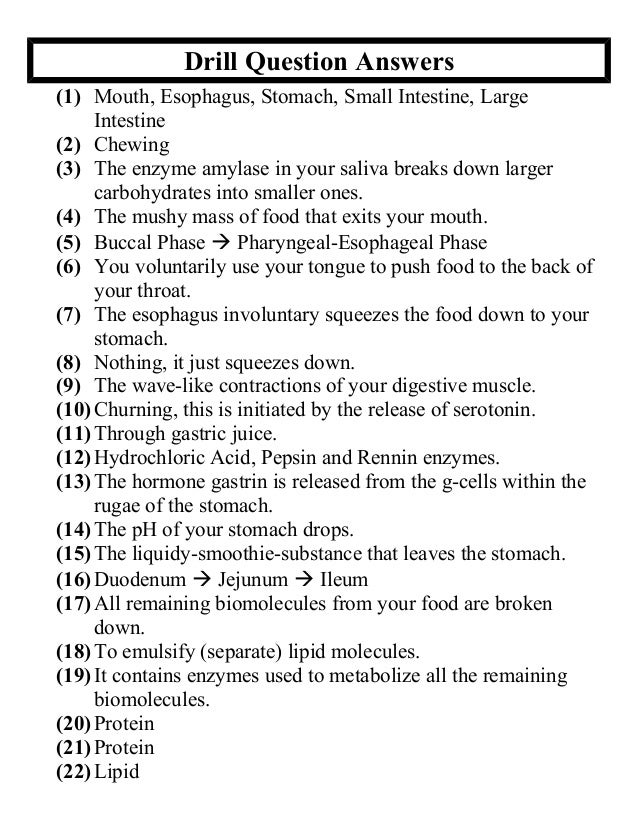 49 Secrets to Put Into Practice Now Digestive system test questions ...