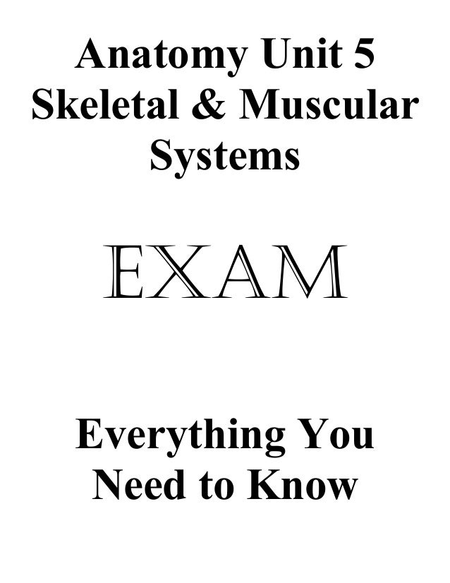 Anatomy unit 5 skeletal and muscular systems exam