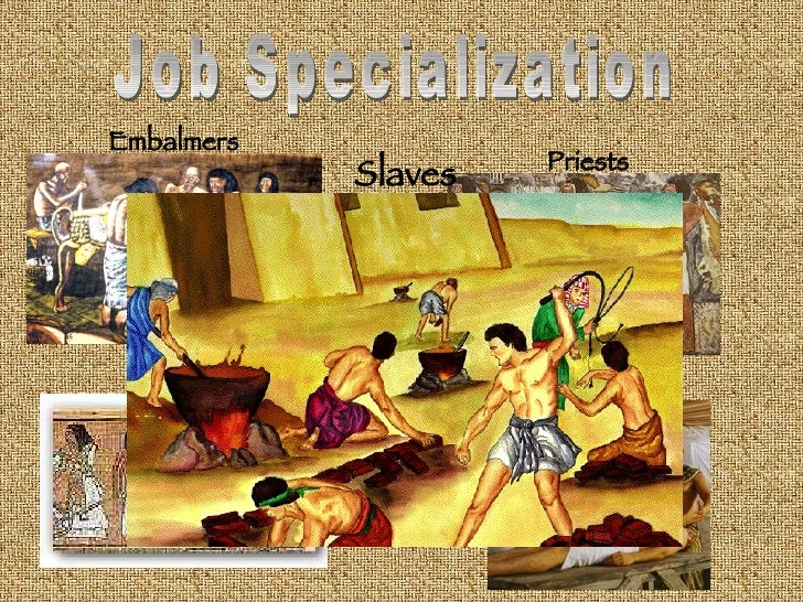 cities job speciallization government Because job specialization gave city residents more leisure time, residents had more time to devote to developments such as _____ b education and the arts which of the following is not a reason why pandemic diseases led to the destruction of early cities.