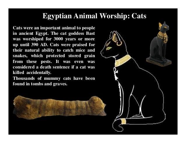 Egypt Cat God Big