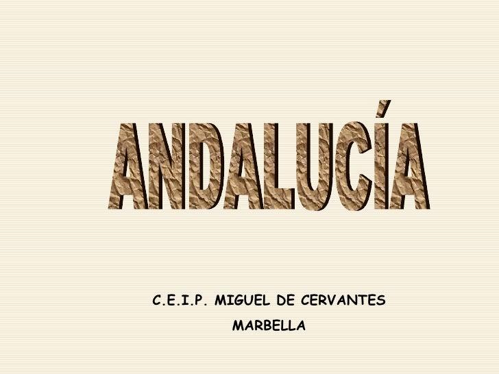ANDALUCÍA C.E.I.P. MIGUEL DE CERVANTES MARBELLA