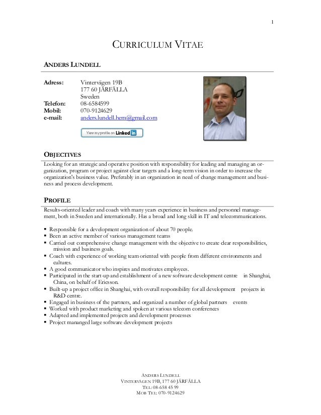 business development manager cv pdf