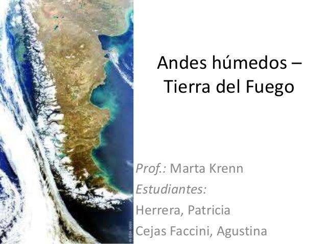 Andes húmedos – Tierra del fuego (Cejas-Herrera 3ro 2013)
