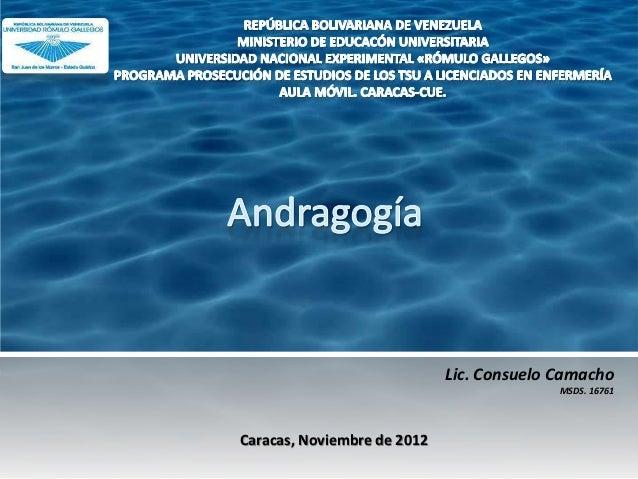 Lic. Consuelo Camacho                                           MSDS. 16761Caracas, Noviembre de 2012