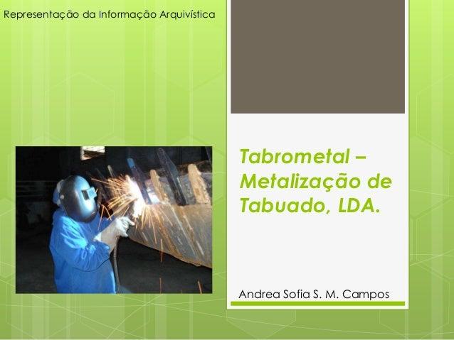 Representação da Informação Arquivística                                           Tabrometal –                           ...