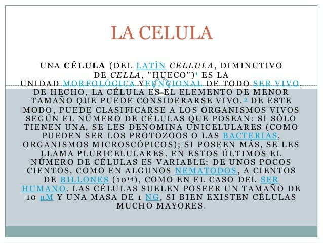 """UNA CÉLULA (DEL LATÍN CELLULA, DIMINUTIVODE CELLA, """"HUECO"""")1 ES LAUNIDAD MORFOLÓGICA YFUNCIONAL DE TODO SER VIVO.DE HECHO,..."""