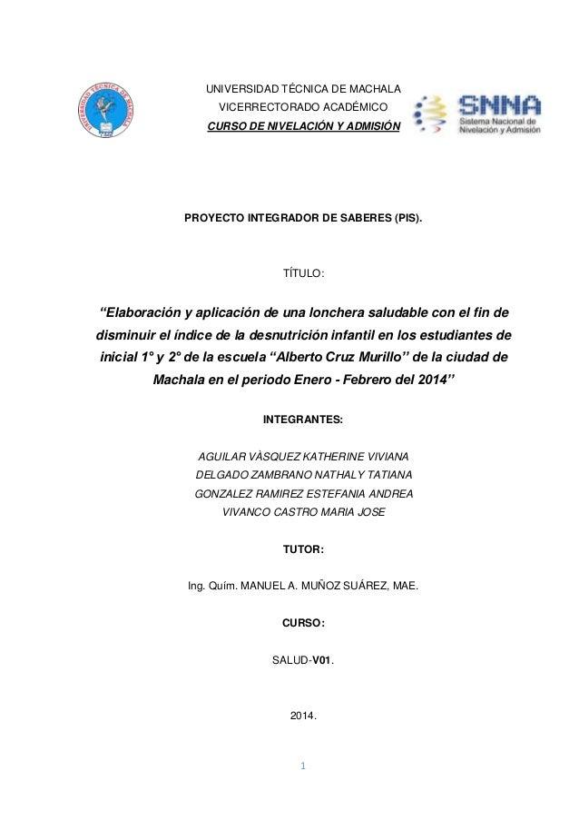 1 UNIVERSIDAD TÉCNICA DE MACHALA VICERRECTORADO ACADÉMICO CURSO DE NIVELACIÓN Y ADMISIÓN PROYECTO INTEGRADOR DE SABERES (P...