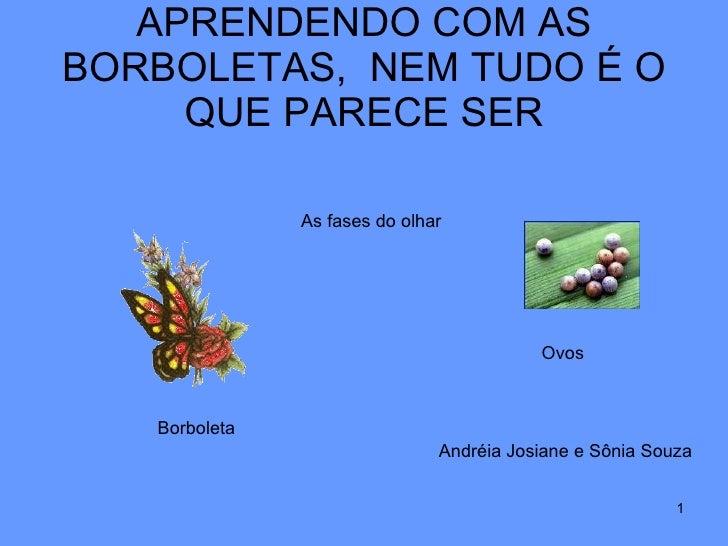 APRENDENDO COM AS BORBOLETAS,  NEM TUDO É O QUE PARECE SER As fases do olhar Ovos Borboleta Andréia Josiane e Sônia Souza