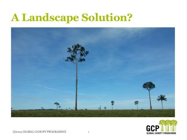 ©2014 GLOBAL CANOPY PROGRAMME 1©2014 GLOBAL CANOPY PROGRAMME A Landscape Solution?