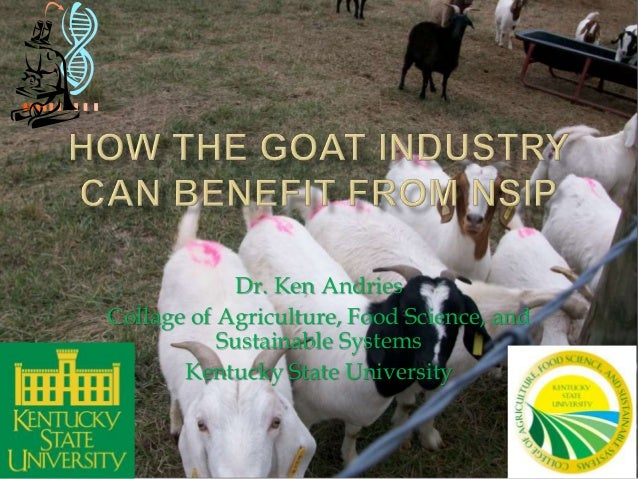How the goat industry can benefit from NSIP