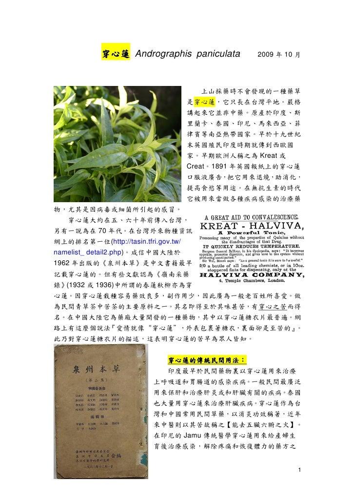 穿心蓮 Andrographis paniculata      2009 年 10 月                                       上山採藥時不會發現的一種藥草                         ...