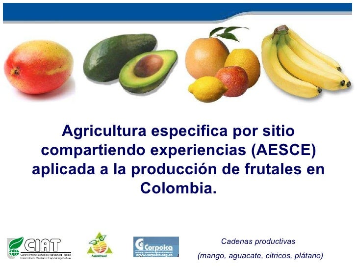 Andy J - Site Specific Agriculture based on Farmers Experiences for fruits in Colombia February 2010