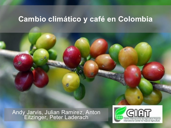 Cambio climático y café en Colombia     Andy Jarvis, Julian Ramirez, Anton     Eitzinger, Peter Laderach