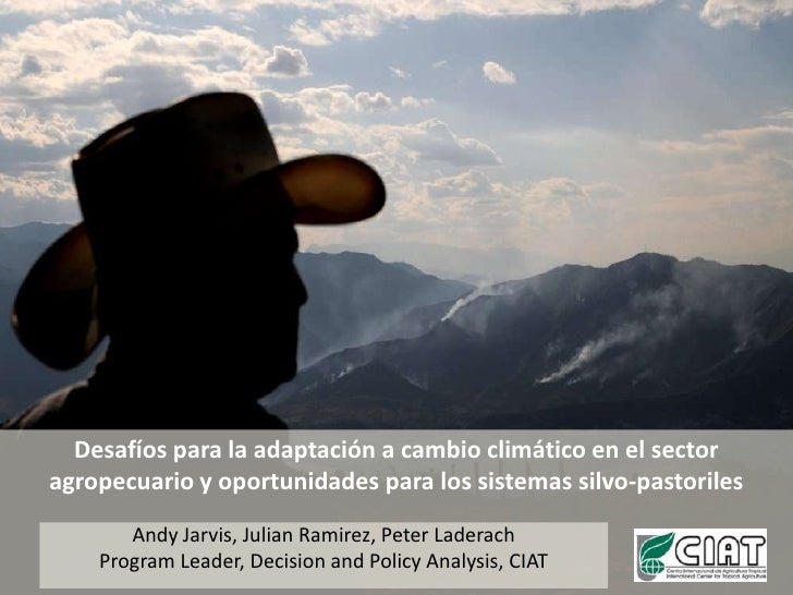 Andy J climate change and silvo-pastoral systems