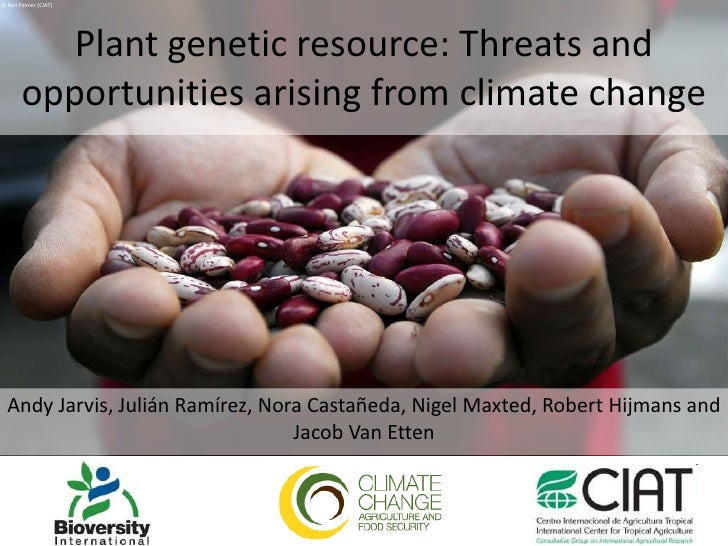 © Neil Palmer (CIAT)<br />Plant genetic resource: Threats and opportunities arising from climate change<br />Andy Jarvis, ...