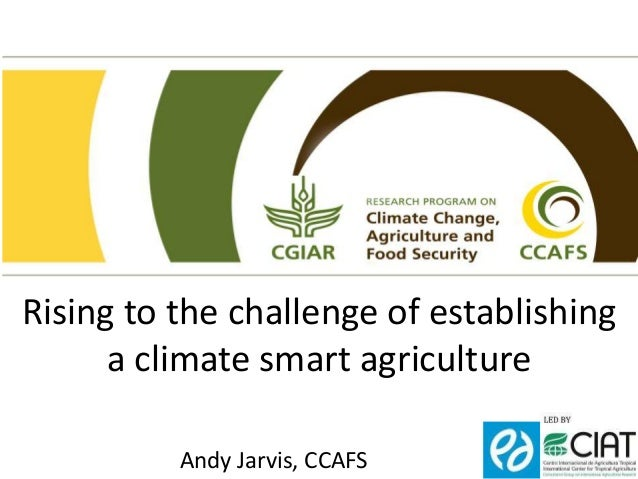 Rising to the challenge of establishing  a climate smart agriculture  Andy Jarvis, CCAFS