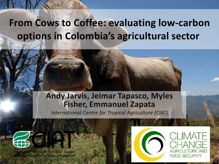 From Cows to Coffee: evaluating low-carbon  options in Colombia's agricultural sector       Andy Jarvis, Jeimar Tapasco, M...