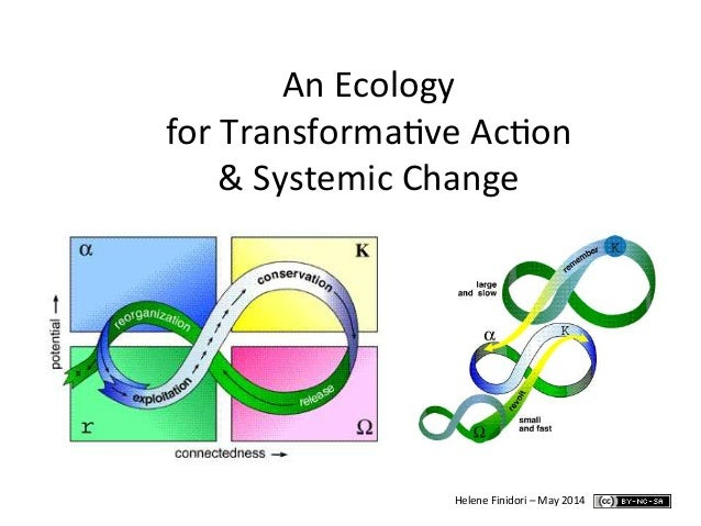 An Ecology  for Transforma0ve Ac0on  & Systemic Change  Helene Finidori – May 2014