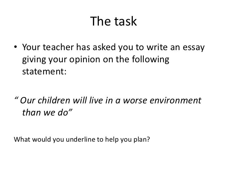 What Is Opinion Essay