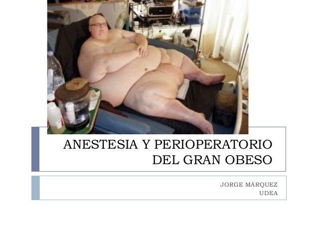 ANESTESIA Y PERIOPERATORIO           DEL GRAN OBESO                   JORGE MÁRQUEZ                            UDEA
