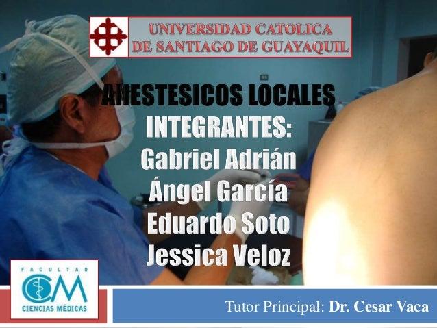 Tutor Principal: Dr. Cesar Vaca