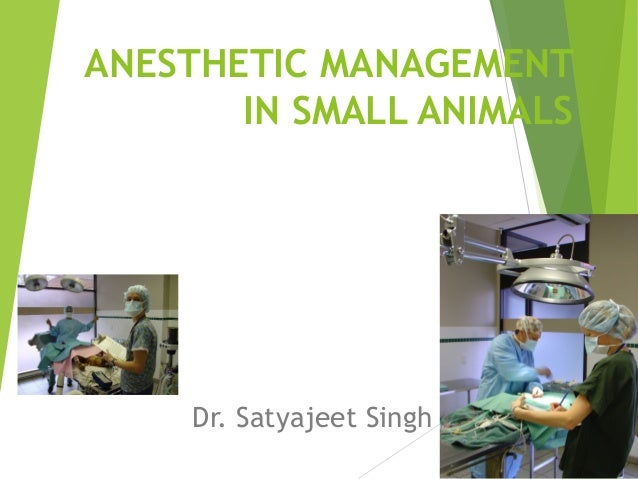 ANESTHETIC MANAGEMENT IN SMALL ANIMALS Dr. Satyajeet Singh