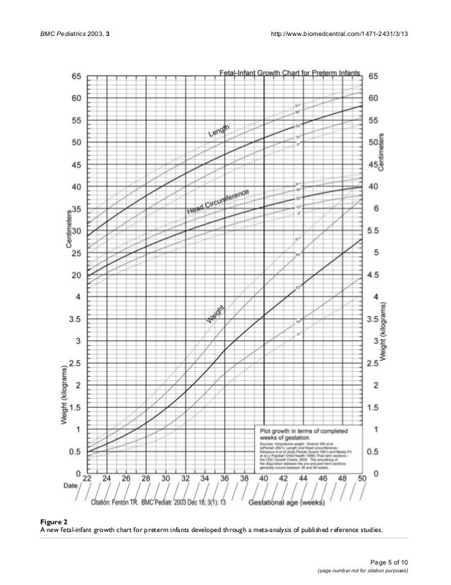 Fetal Baby Growth Chart