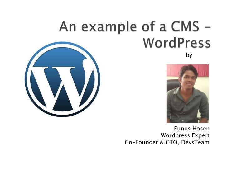 An example of cms - wordpress