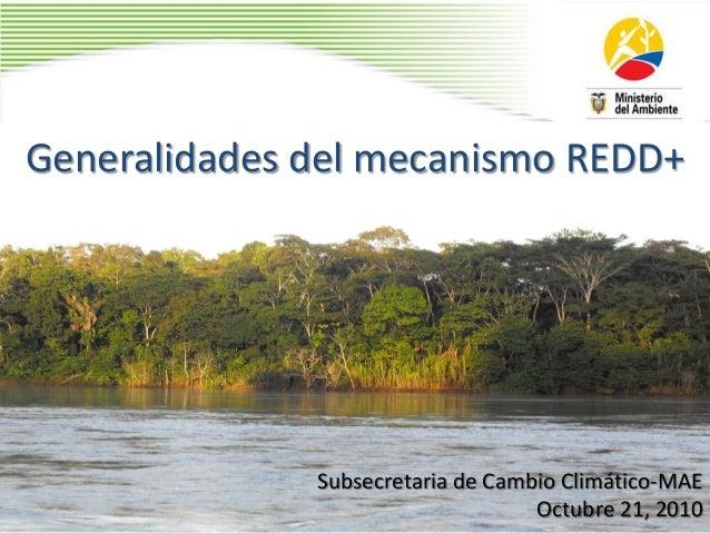 Generalidades del mecanismo REDD+ Subsecretaria de Cambio Climático-MAE Octubre 21, 2010