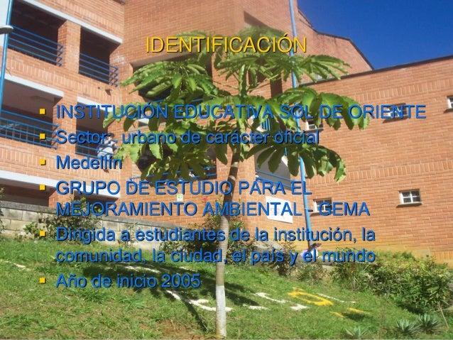 IDENTIFICACIÓN  INSTITUCIÓN EDUCATIVA SOL DE ORIENTE  Sector: urbano de carácter oficial  Medellín  GRUPO DE ESTUDIO P...