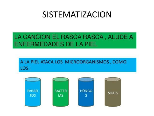 SISTEMATIZACION LA CANCION EL RASCA RASCA , ALUDE A ENFERMEDADES DE LA PIEL A LA PIEL ATACA LOS MICROORGANISMOS , COMO LOS...