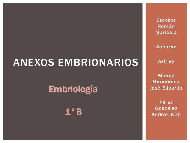 Escobar Román Maricela Saharay  ANEXOS EMBRIONARIOS Embriología 1°B  Ashley Muñoz Hernández José Edoardo Pérez González An...