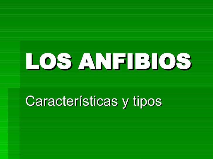 LOS ANFIBIOS Características y tipos