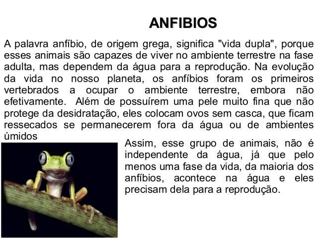 """AANNFFIIBBIIOOSS  A palavra anfíbio, de origem grega, significa """"vida dupla"""", porque  esses animais são capazes de viver n..."""