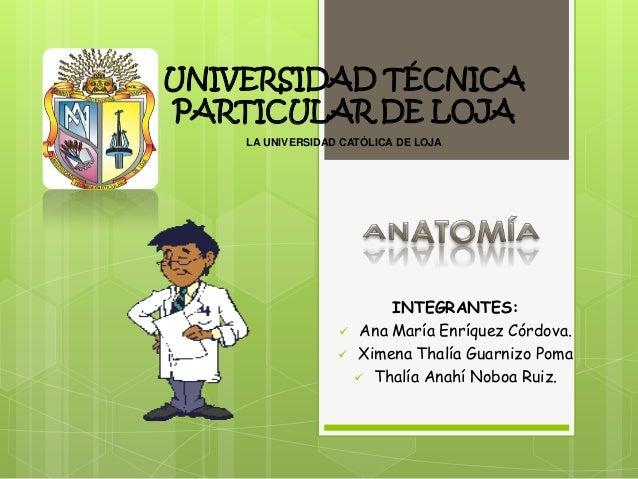 Anfiteatro caso clinico (lunes)