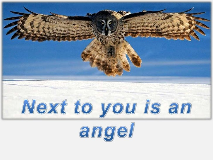 Next to you is an angel<br />