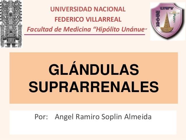 """UNIVERSIDAD NACIONAL FEDERICO VILLARREAL Facultad de Medicina """"Hipólito Unánue""""""""  GLÁNDULAS SUPRARRENALES Por: Angel Ramir..."""