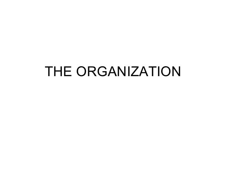 Angel miralles the organization