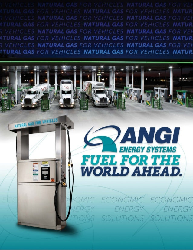 ANGI Energy Systems Informational Brochure