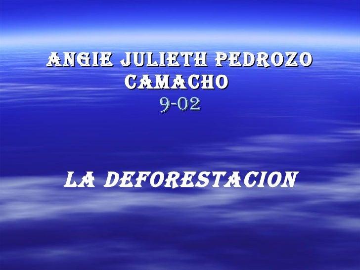 Angie Julieth Pedrozo Camacho   9-02 LA DEFORESTACION
