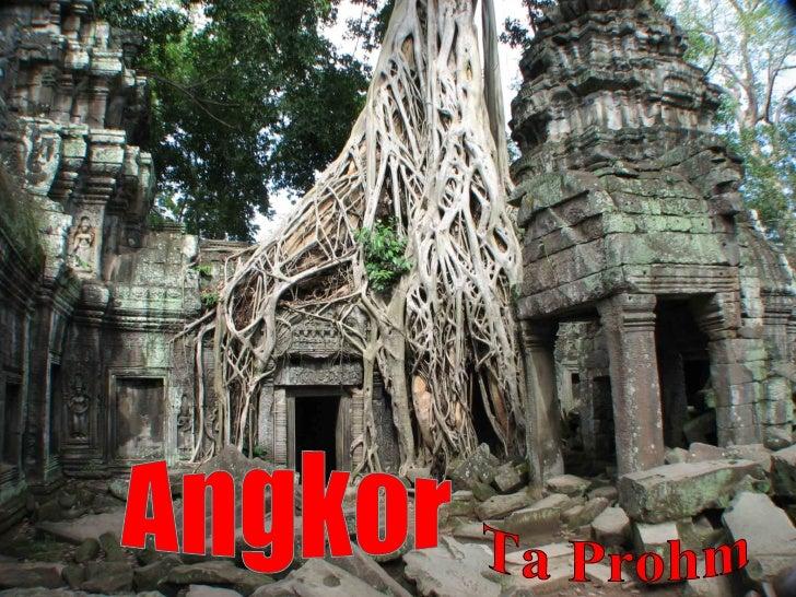 Angkor, Temple Ta Prohm