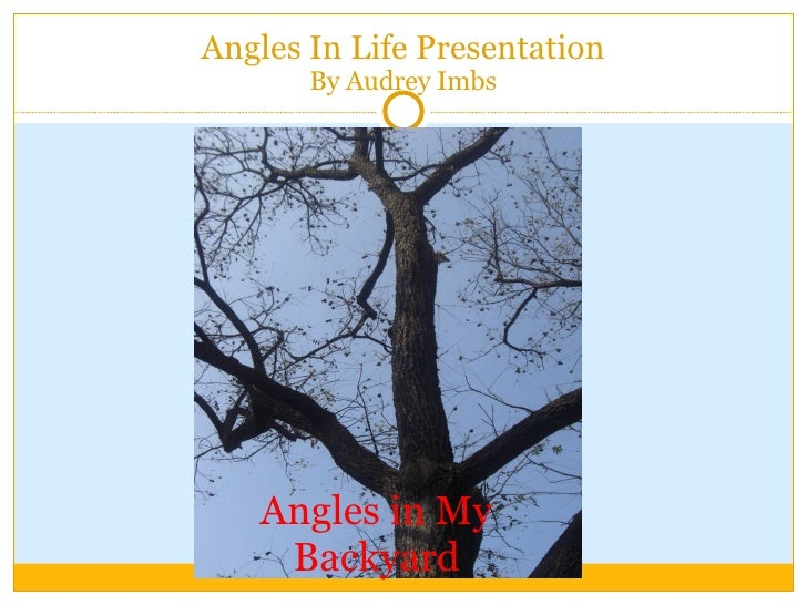 Angles In Life Presentation By Audrey Imbs Angles in My Backyard