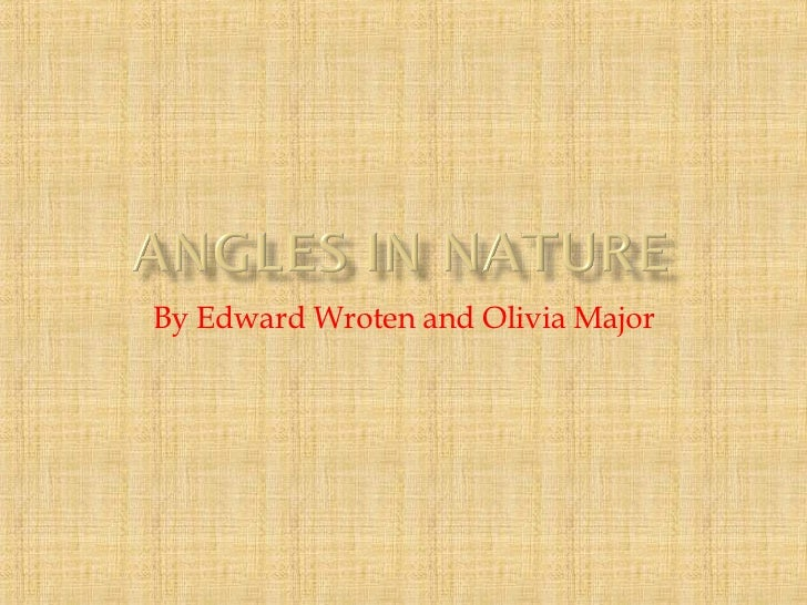 Angles In Nature 2