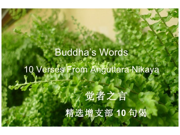 Buddha's Words 10 Verses From Anguttara Nikaya 觉者之言 精选增支部 10 句偈