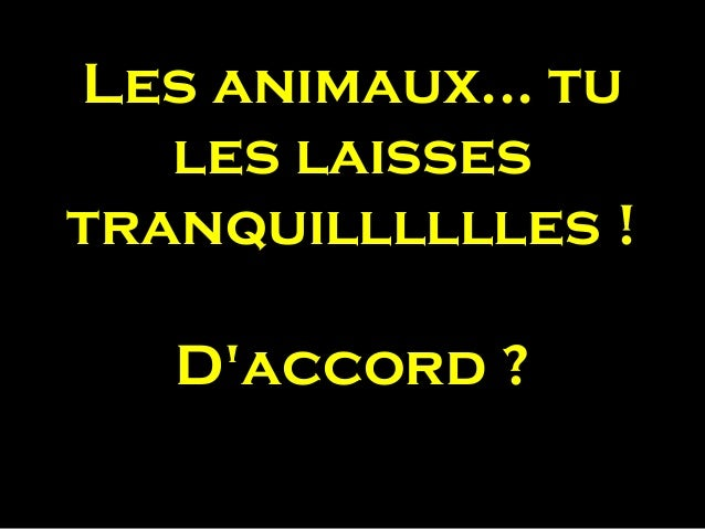 Les animaux... tules laissestranquilllllles !Daccord ?