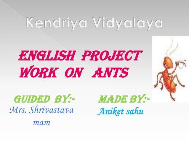 Ants......