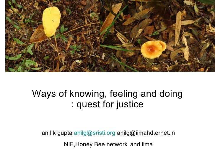 Ways of knowing, feeling and doing : quest for justice anil k gupta  [email_address]  anilg@iimahd.ernet.in NIF,Honey Bee ...
