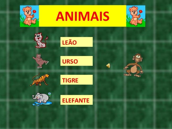 ANIMAIS LEÃO URSO TIGRE ELEFANTE